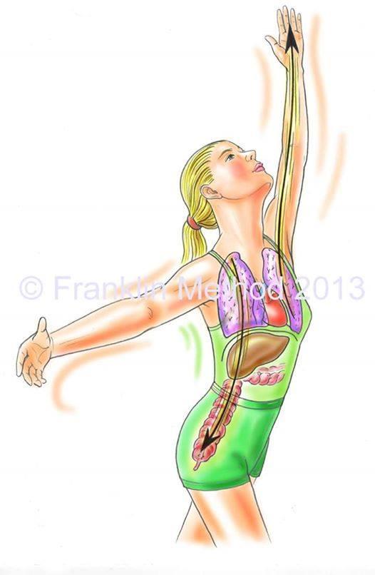 9/8(日)東京 西山晶子WS「肝臓と横隔膜、姿勢の関係」